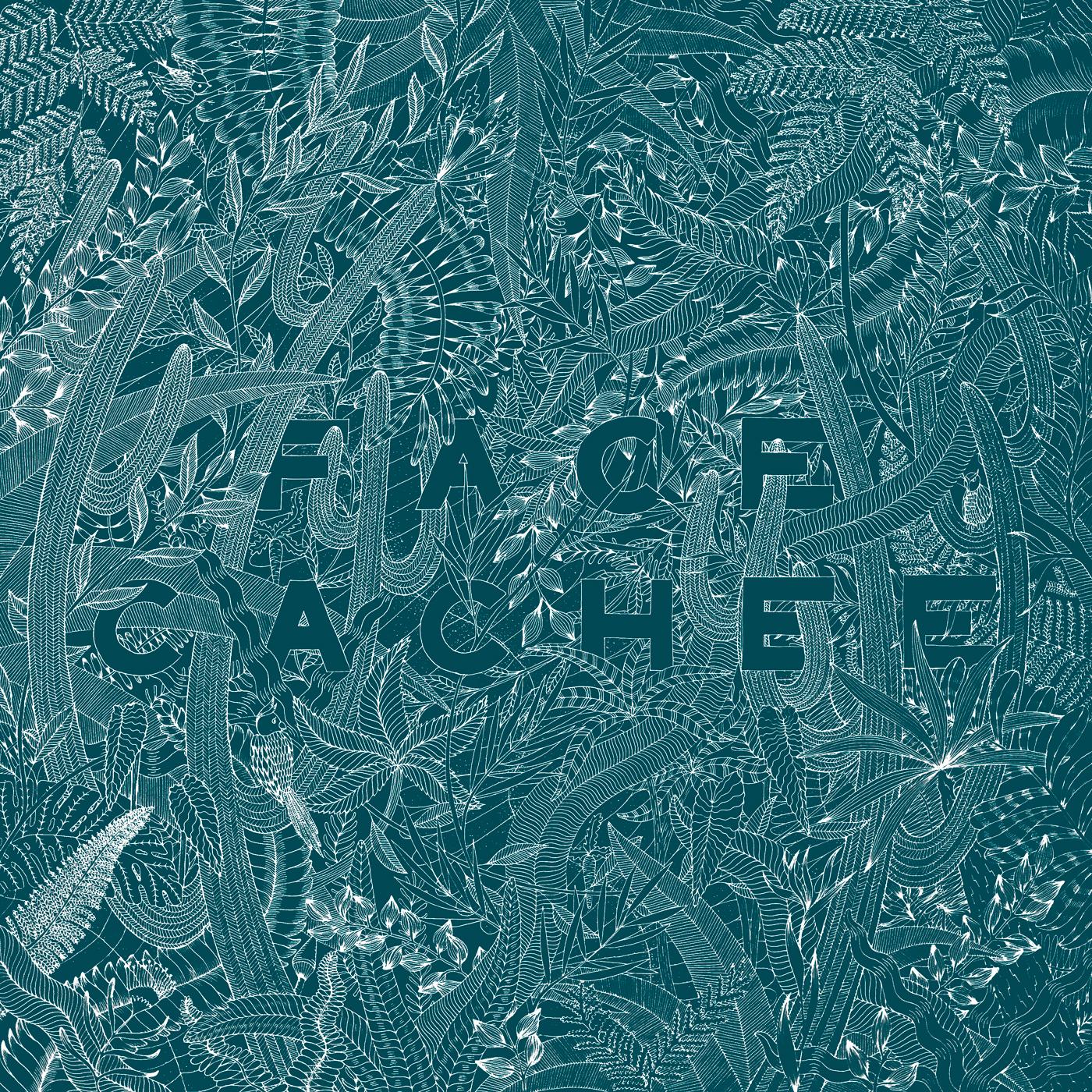illustration dans la jungle avec le mot face cachée