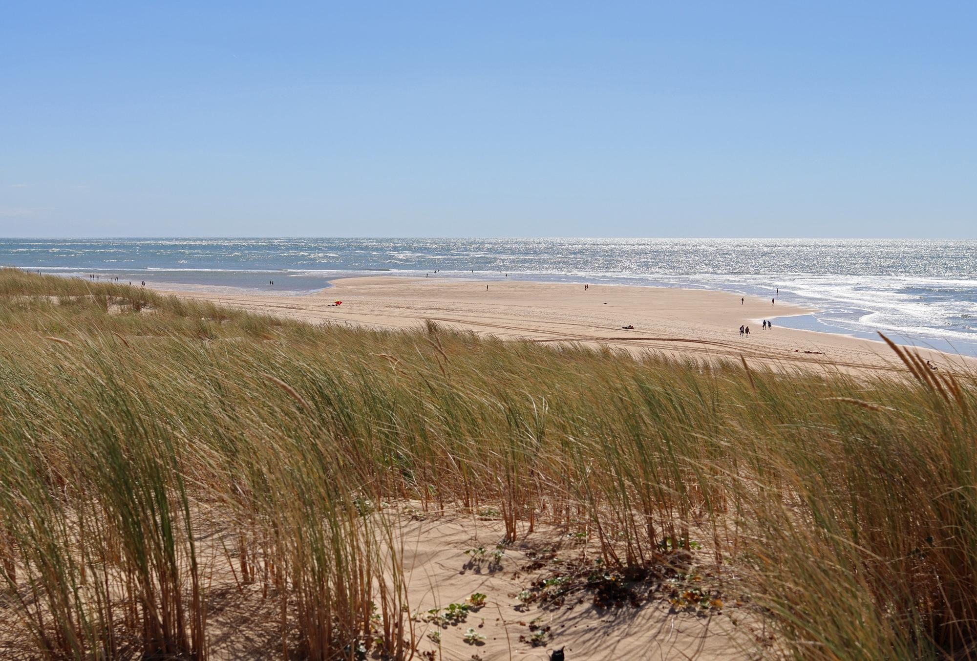 photo de plage au cap ferret