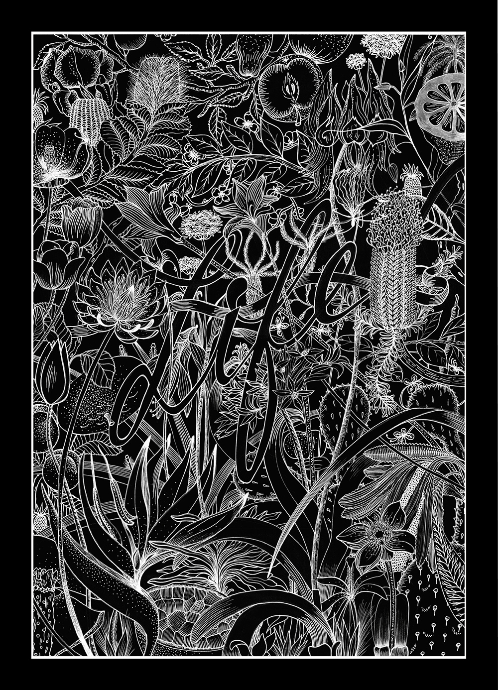 illustration manuelle life