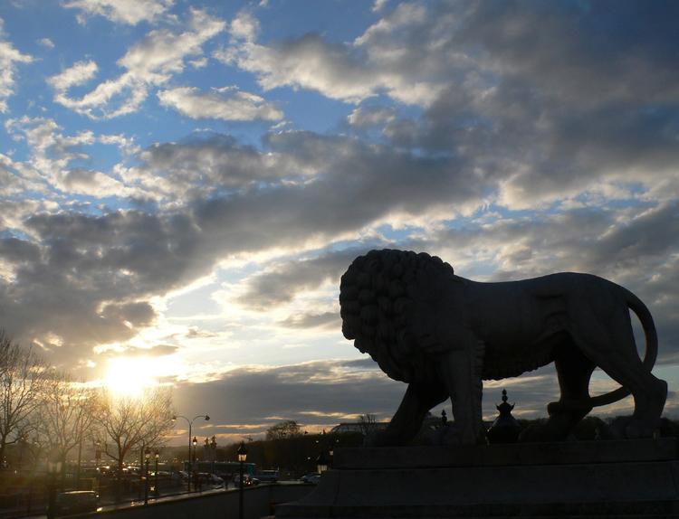 Le Lion regarde le soleil, Paris
