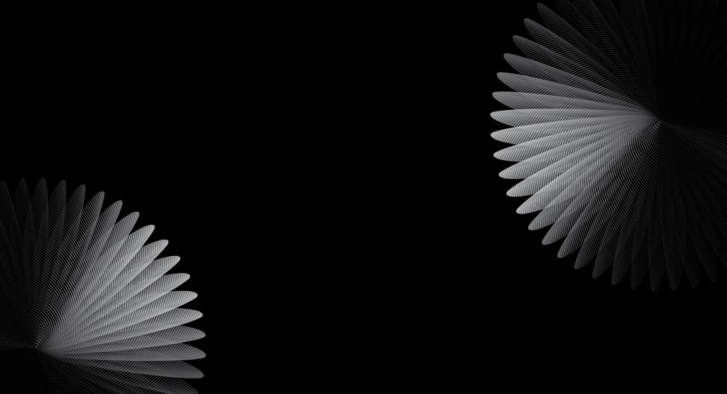 forme géométrique vectorielle du bird repeater