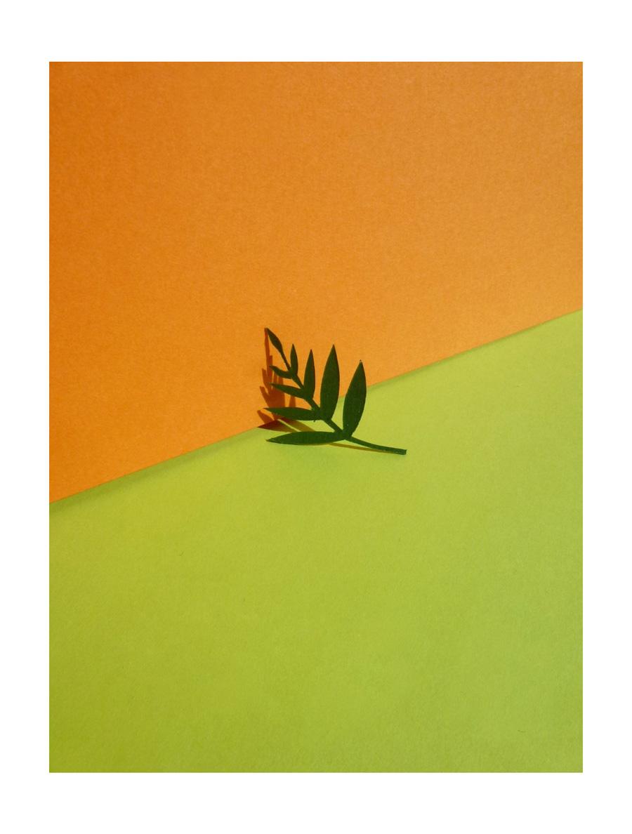 découpe de feuilles dans le papier