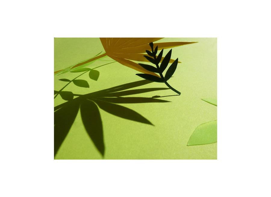 scène de papiers découpés sur le thème nature