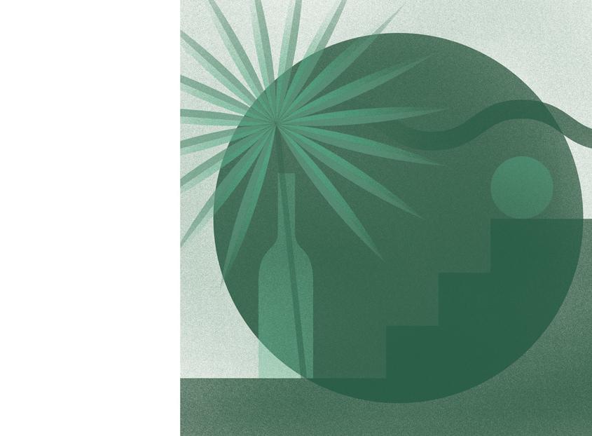 Aller vers le projet d'illustration plantes vertes