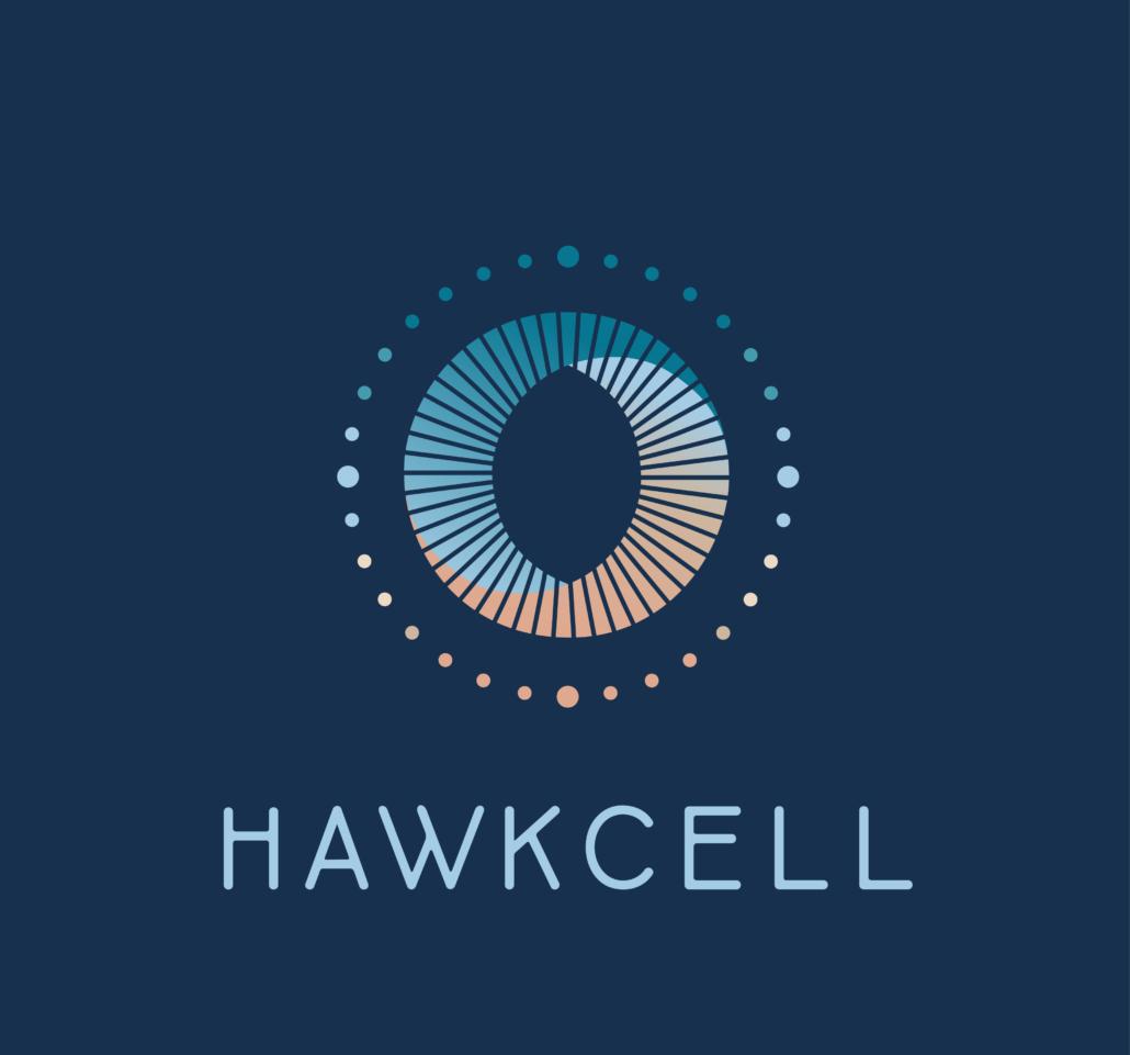 Logo pour hawkcell