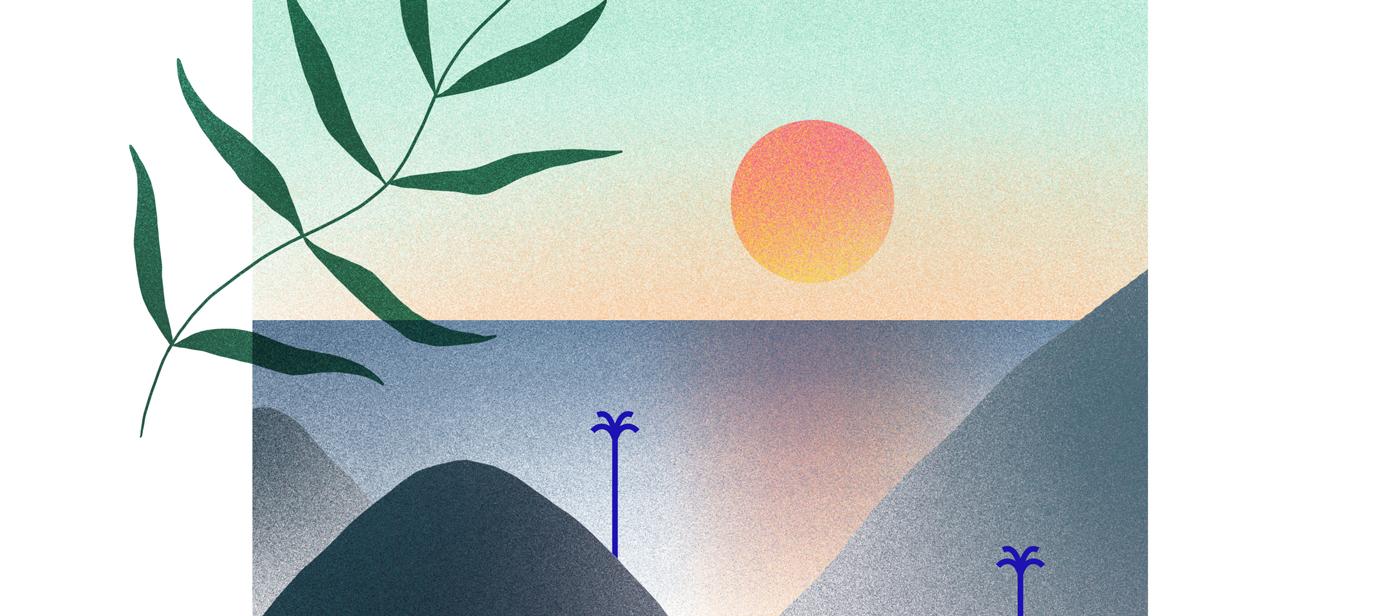 illustration d'horizons avec soleil couchant