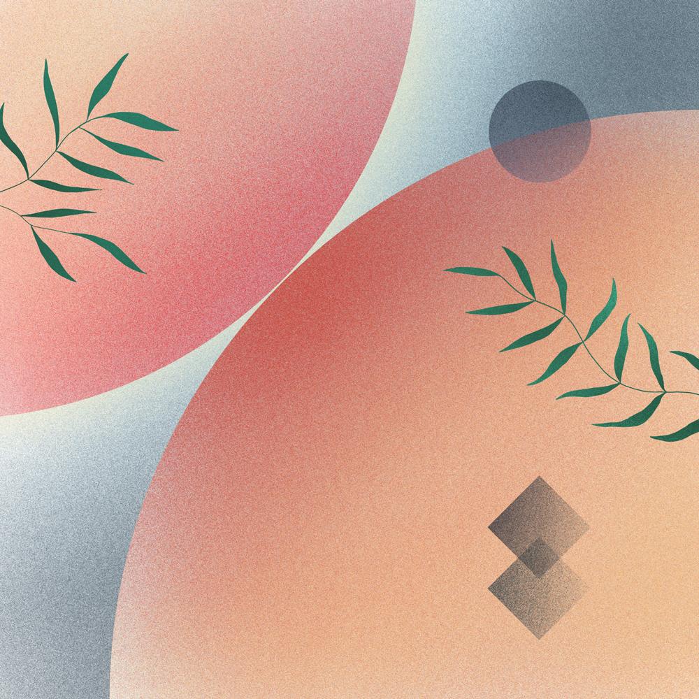 illustration de deux sphères planètes avec plantes