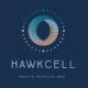 projet de design graphique pour hawkcell